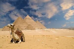 Location de voiture Caire