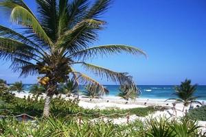 Location de voiture Cancun