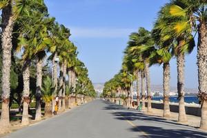 Leiebil Limassol